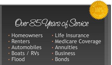 Car Insurance, Homeowners Insurance, Renters Insurance, Boat Insurance,  Insurance Brooklyn Michigan
